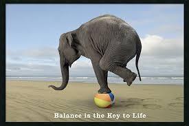 Balance - Elephant